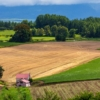 空き家バンクで畑付き物件を探してみた 田舎への移住と農業のコラム