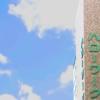 認定日はハローワークで求職活動実績を報告!【雇用保険の解説】